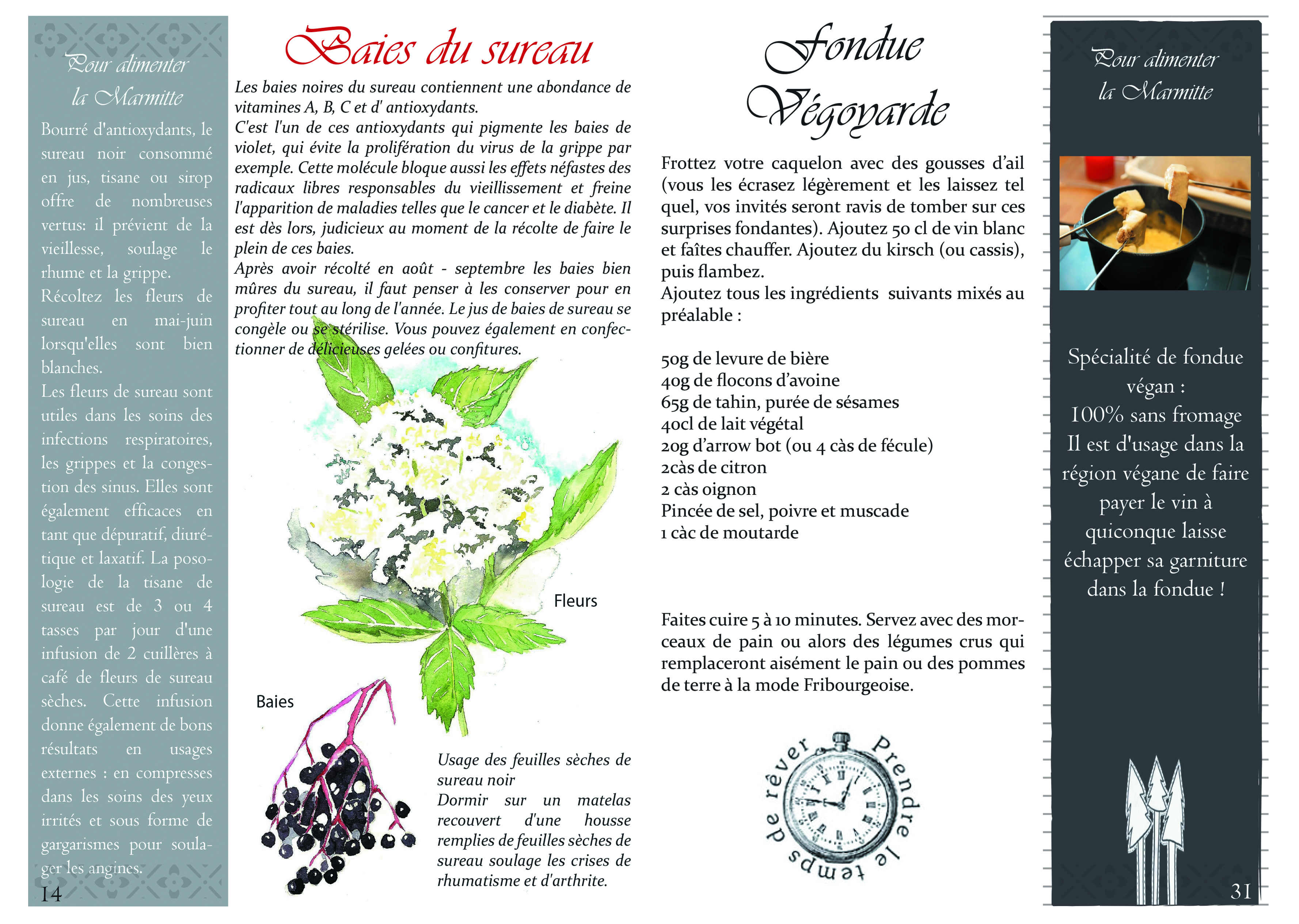 Page 14-31