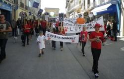 Un genocide animalier sans précédent : Roumanie